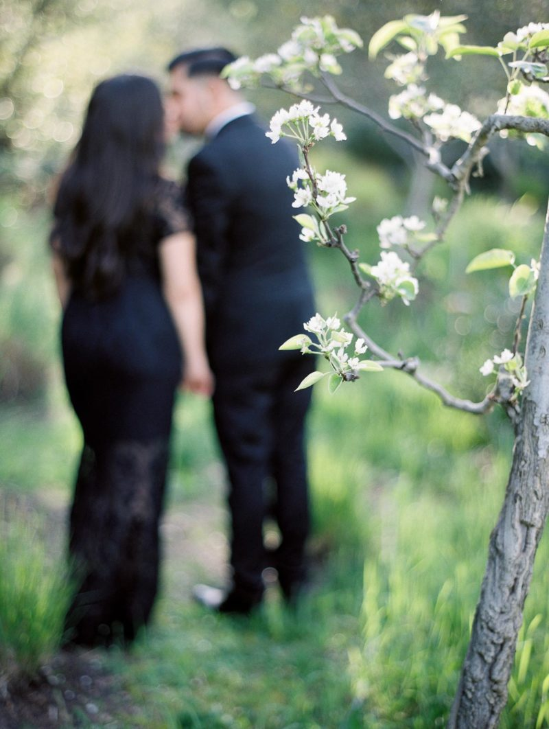 napa-valley-engagement